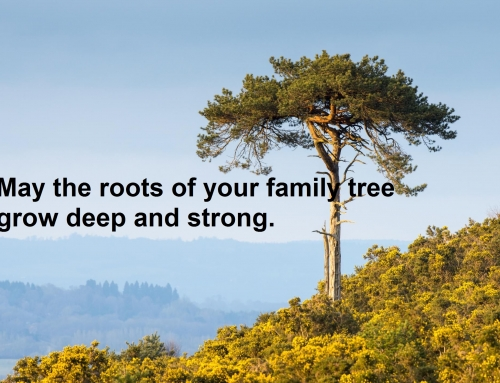 טיפול בקונסטלציה משפחתית